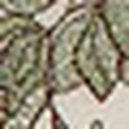 3/4カップブラ(ノンワイヤーブラ), , swatch