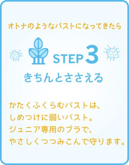 STEP3 きちんとささえる
