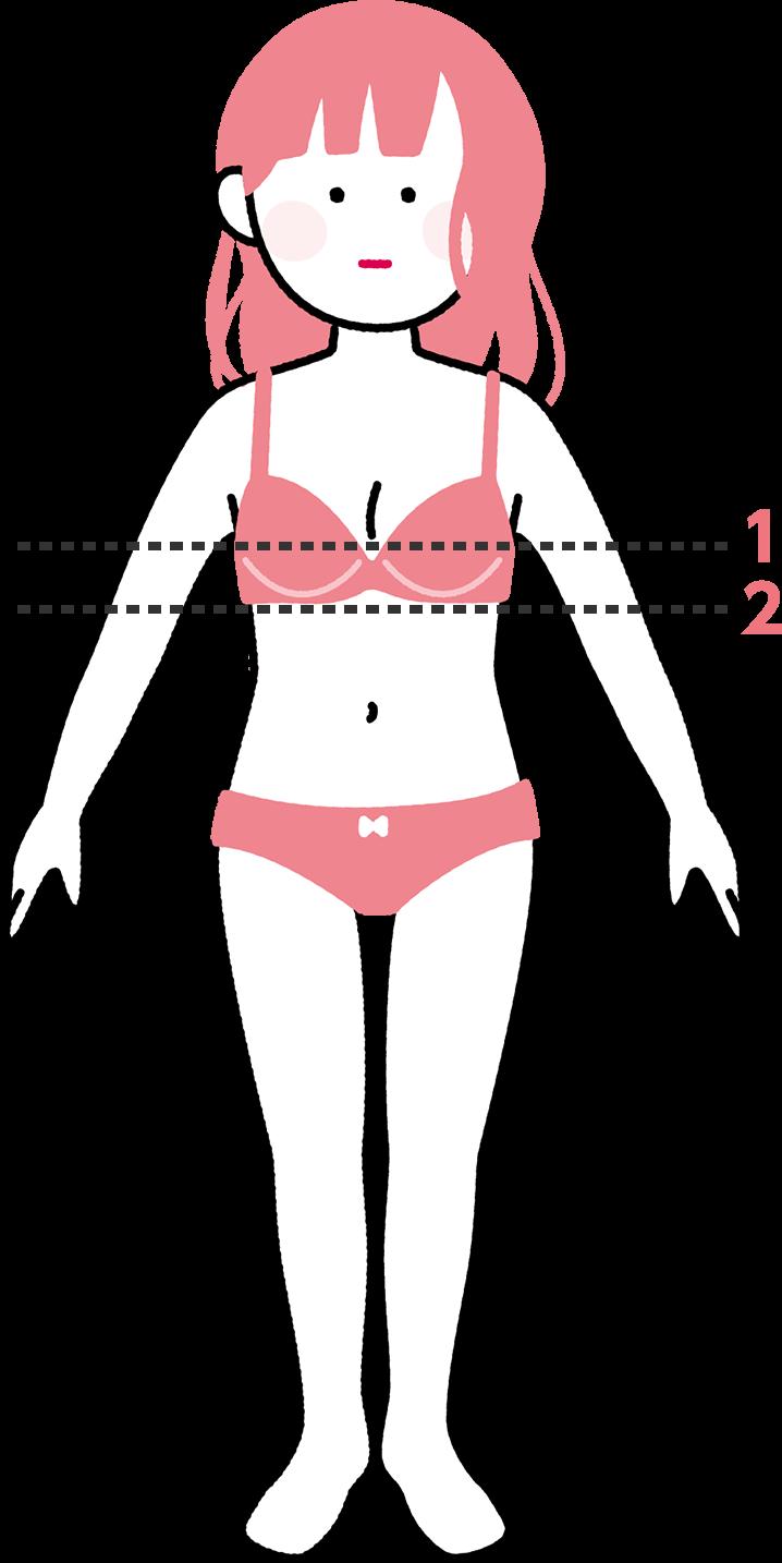 測る場所1:トップバスト、測る場所2:アンダーバスト