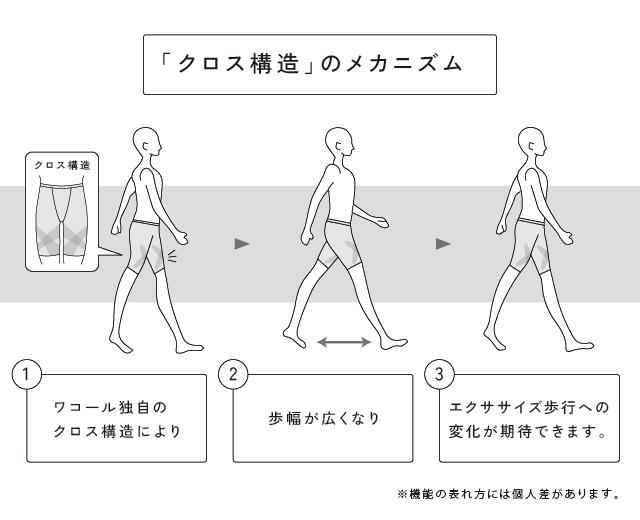 「クロス構造」のメカニズム 機能説明